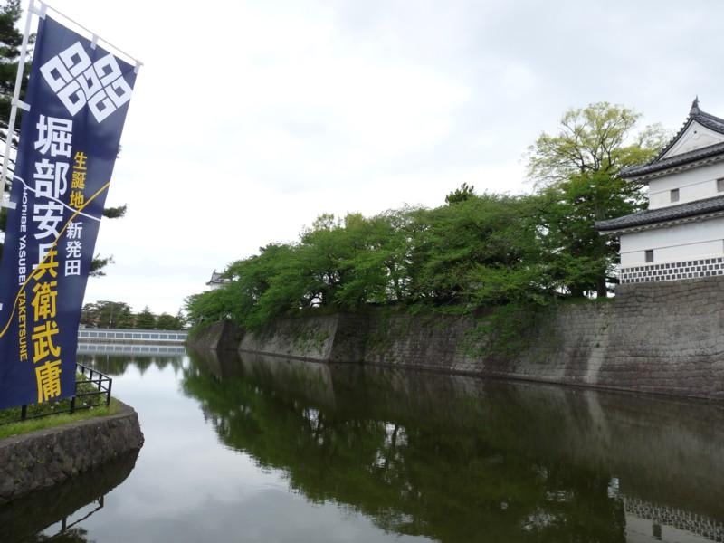 20120513_shibata_02shibatacat