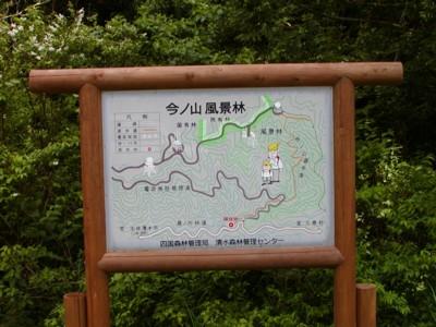 20010603_ashizuri_16imanoyama