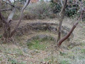20011216_tsushima_18ozakiyama
