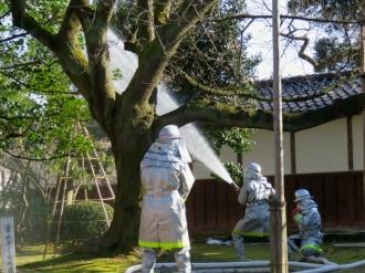 20200126_miyao_15uchiyamatei